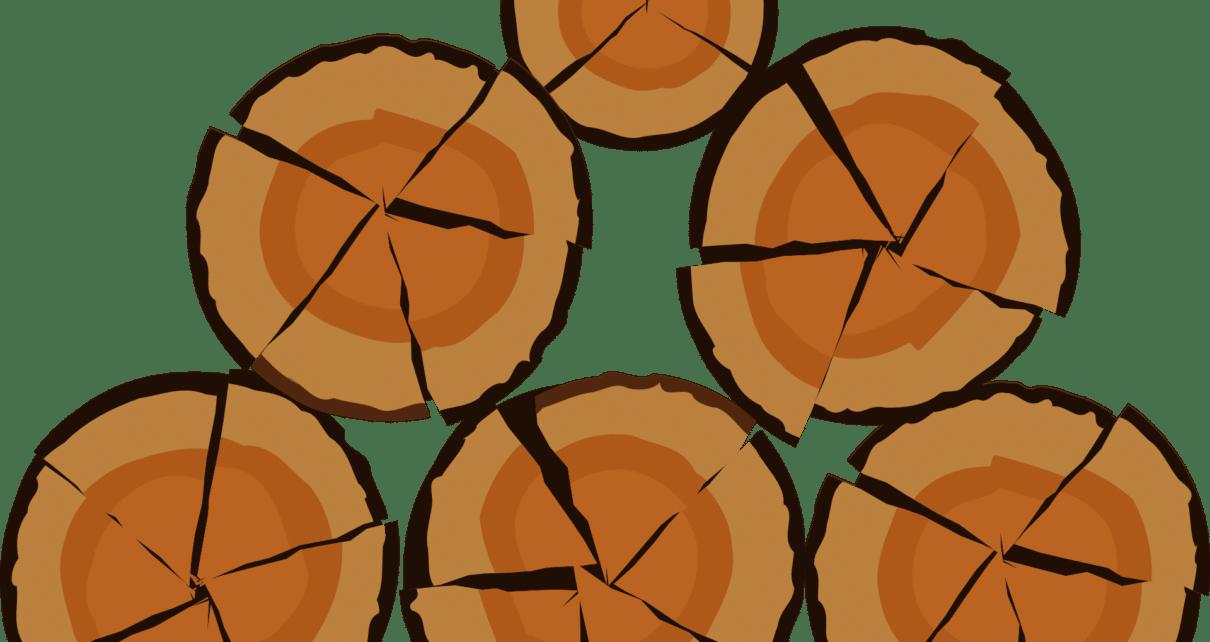Технология блокчейн помогает снизить воздействие вырубки лесов в Бразилии