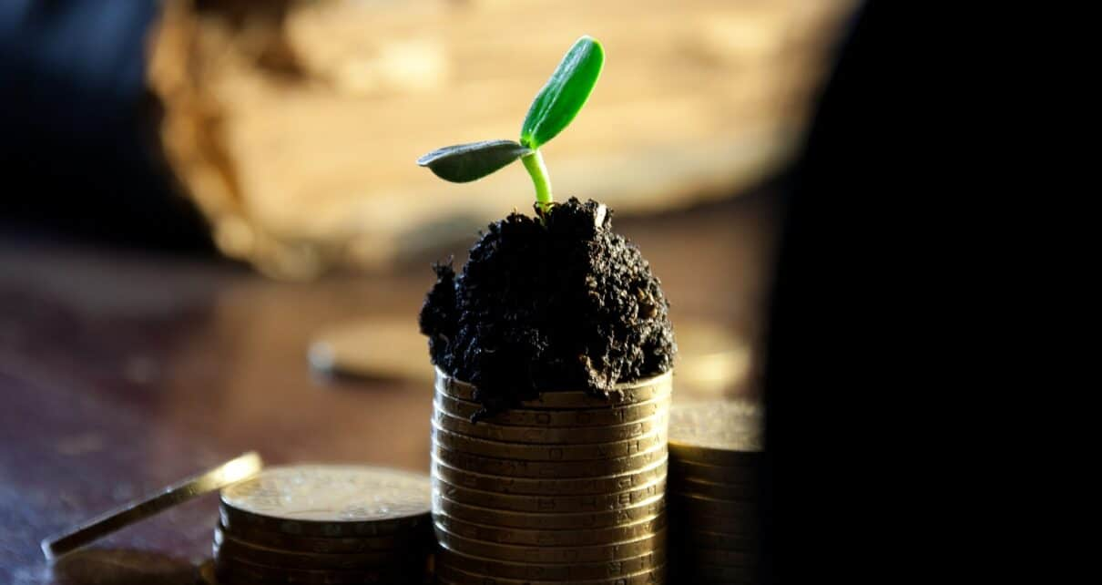 Токены Fair Launch превосходят среднюю производительность монеты