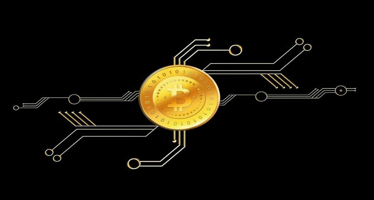 Компания Stablecoin заработала рекордную сумму инвестиций для криптовалютной компании
