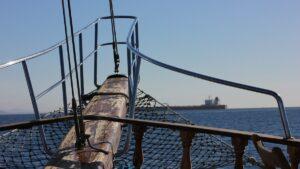 Испанская фирма, специализирующаяся на морепродуктах, сотрудничает с IBM в отслеживании цепочки поставок