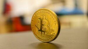 Средний австралийский крипто-портфель вырос на 258%